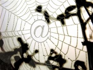 (c) www.pixelio.de / pepsprog
